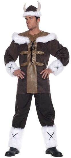 Mens Viking Warrior Adult Costume