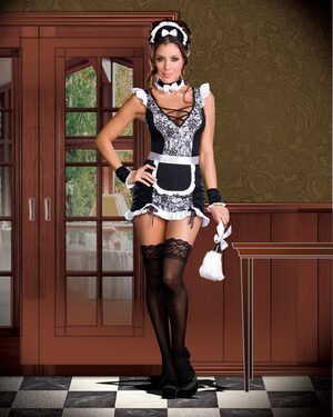 Parisian Provocateur Sexy French Maid Costume