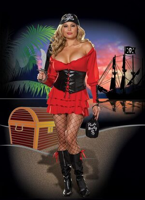 Family Jewel Sexy Pirate Wench Plus Size Costume