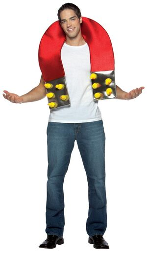Mens Chick Magnet Funny Adult Costume