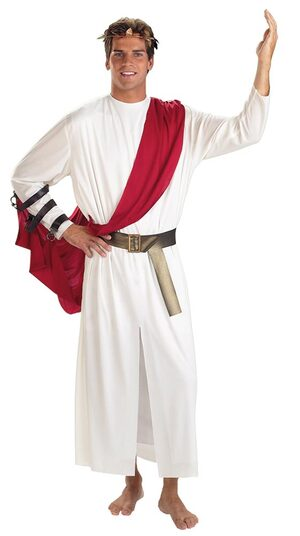 Mens Roman God Adult Toga Costume
