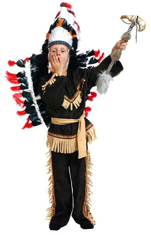 Brave Wolf Scout Indian Costume