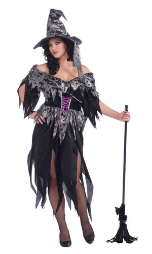 Womens Tattered Cinder Witch Plus Size Costume