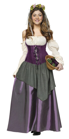 Medieval Tavern Wench Adult Costume