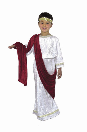 Boys Julius Caesar Toga Kids Costume