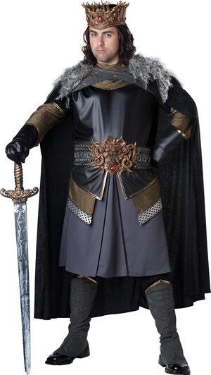 Medieval Majesty King Plus Size Costume