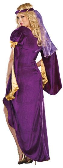 Medieval Queen of Thrones Plus Size Costume