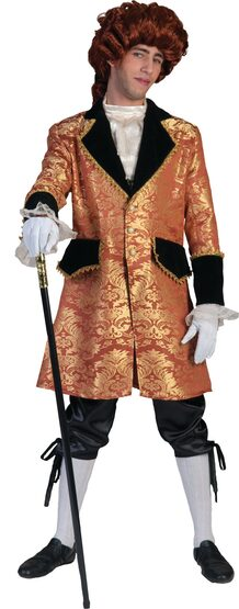 French Charles at Court Adult Costume