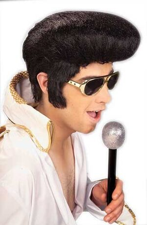 Adult 50s Style Rock and Roll Elvis Wig