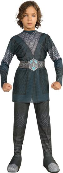LOTR Dwarf Leader Thorin Kids Costume