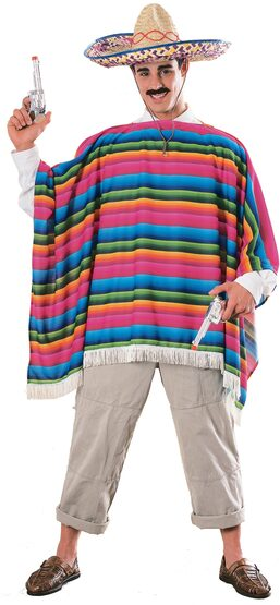 Mexican Serape Funny Adult Costume