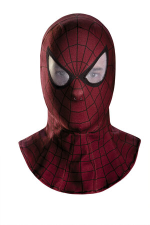 Spiderman Movie Hooded Mask