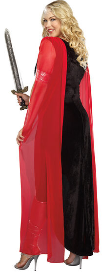 Scandalous Sword Warrior Plus Size Costume