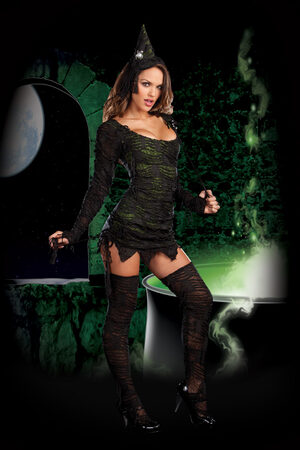 Sexy Wonderfully Wicked Witch Costume