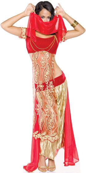 Sexy Jewel of the Desert Arabian Costume