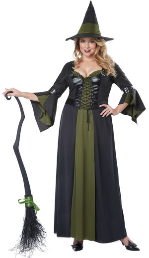 Classic Wicked Witch Plus Size Costume