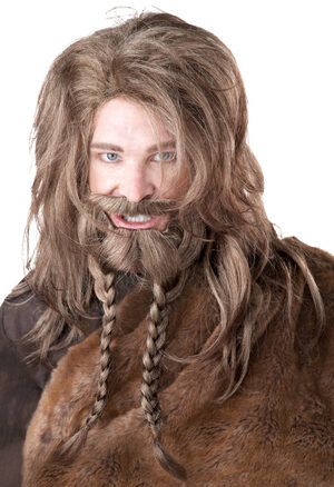Viking Beard, Moustache and Wig