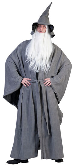 Magical Grey Wizard Adult Costume