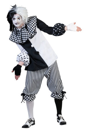 Checkered Clown Adult Costume