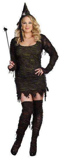 Wonderfully Wicked Witch Plus Size Costume