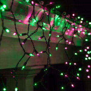 150 Mini Purple, Green Icicle Lights, Black Wire