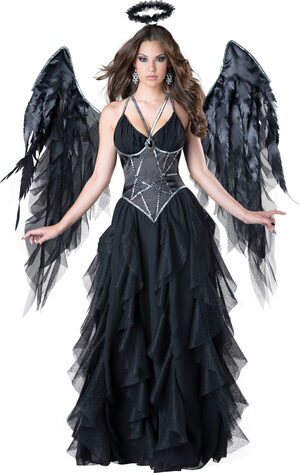 Sexy Divine Dark Angel Costume
