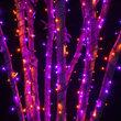 70 5mm Purple, Orange LED Halloween Lights on Black Wire