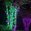 70 5mm Purple, Green LED Halloween Lights on Black Wire