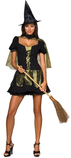Sexy Wicked Witch Costume