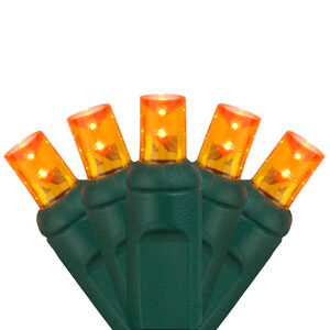 70 5mm Amber LED Halloween Lights on Green Wire