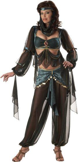 Harem Princess Adult Costume