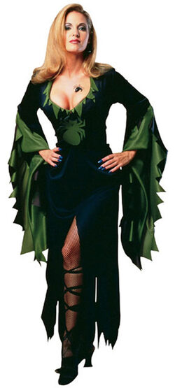 Womens Enchantra Sexy Witch Costume