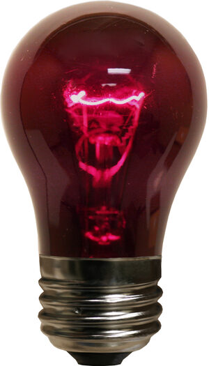 A15 Purple Transparent Replacement Bulbs
